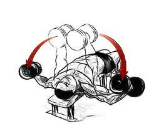 intelligent chest training09